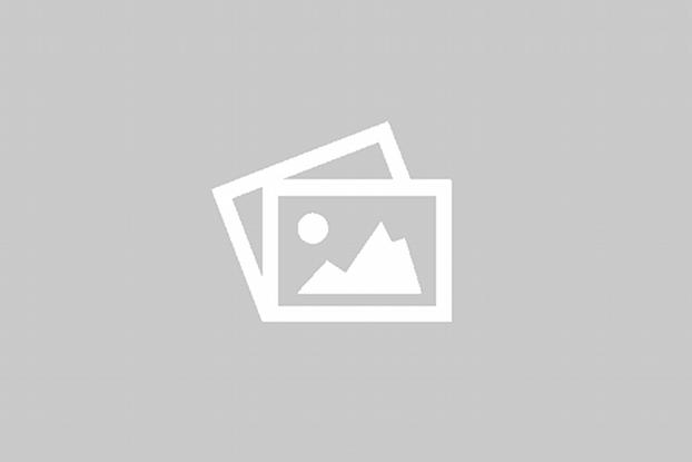 Nyheter - Webutvikling - CMS - Oppdateringer